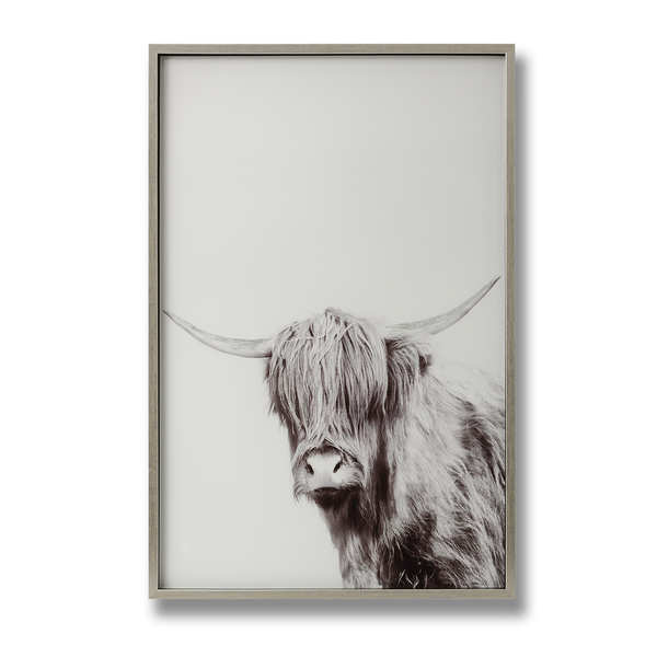Highland Cow Left Facing Glass Image with Silver Frame