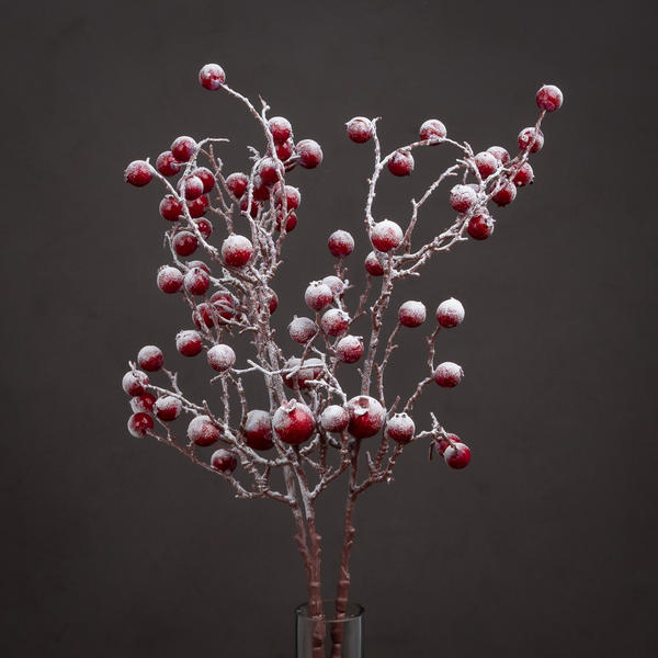 Large Red Festive Berry