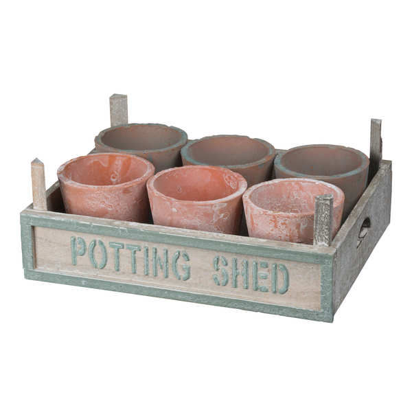 Rustic Potting Shed Small Seeding Tray With Pots