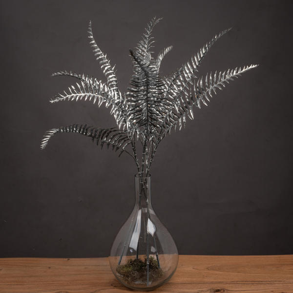 Silver Fern Spray