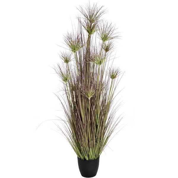 Water Bamboo Grass 72 Inch