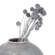 Image 3 - Dried Grey Billy Ball Bunch Of 20