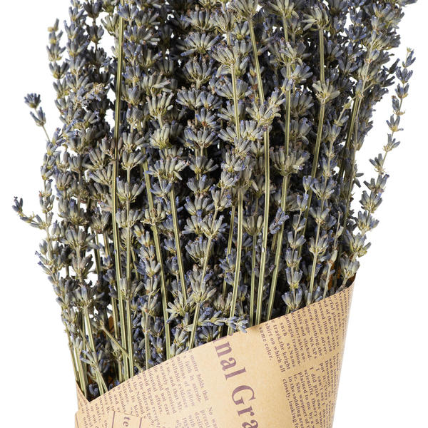 Image 3 - Dried lavender Bunch
