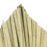 Image 3 - Dried Natural Fan Palm