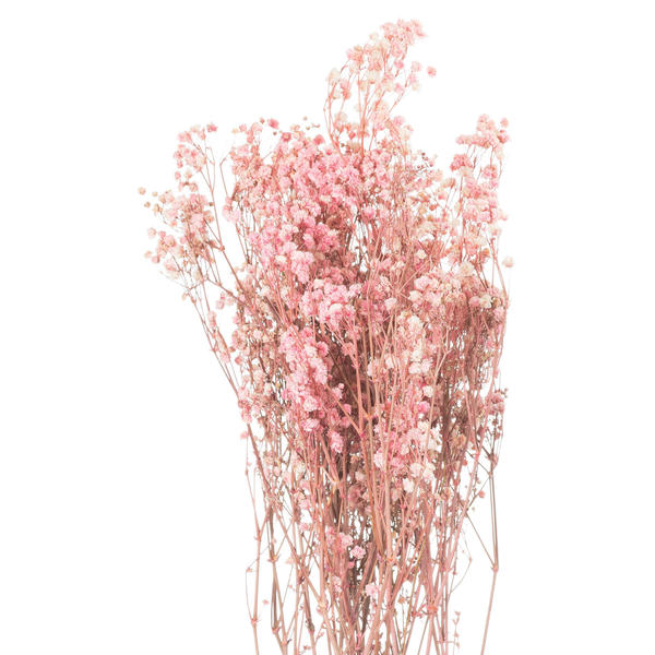 Image 1 - Dried Pale Pink Babys Breath Bunch