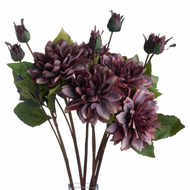 Image 3 - Dusty Purple Dahlia