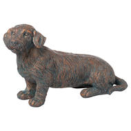 Image 1 - Eric The Wire Haired  Dachshund