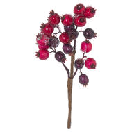 Image 1 - Fat Red Berry Pick