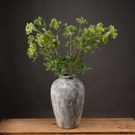 Image 1 - Faux Cow Parsley Ammi