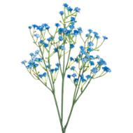 Image 3 - Forget Me Not Spray