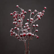 Image 1 - Large Red Festive Berry