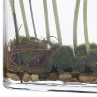 Image 2 - Ranunculus Arrangment In Glass Pot