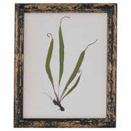 Rustic Framed Botanical Grass Picture