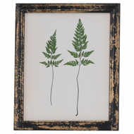 Image 1 - Rustic Framed Botanical Pair Of Ferns Picture