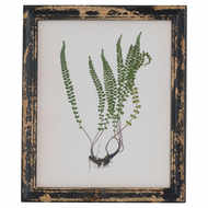 Rustic Framed Botanical Picture