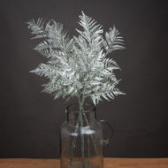 Image 1 - Single Silver Fern