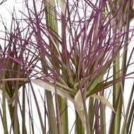 Image 2 - Water Bamboo Grass 24 Inch