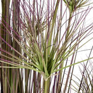 Image 2 - Water Bamboo Grass 72 Inch